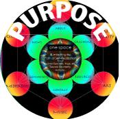 McG_CS_Purpose