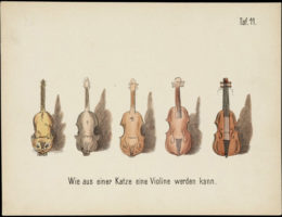 Evolution of household articles Violin
